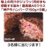 神戸牛ハンバーグ 150g×5個 画像