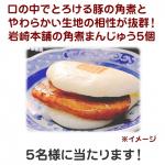 長崎のB級グルメの代表格「岩崎本舗の角煮まんじゅう5個」 画像