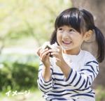 令和元年産 新潟県産こしいぶき(5kg) 画像